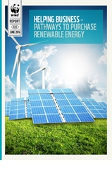 Direct corporate purchase of renewable energy