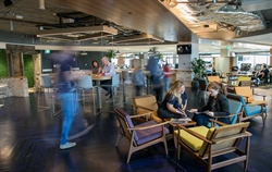 How coworking can help make sustainability sexy for tenants