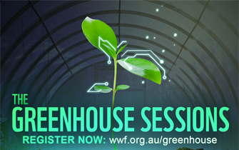 The Greenhouse Sessions