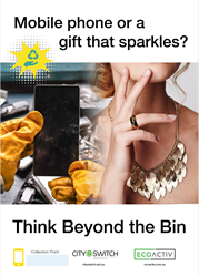 Beyond the Bin posters